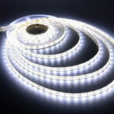 5M Roll of 4.8W Single Row LED Tape