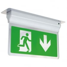 Eagle LED 2.5W Exit Sign Light 2.5W, Silver Grey