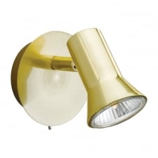 Magnum Brushed Brass Single Spotlight with Switch