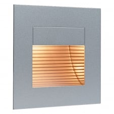Satin Steel Wall & Step Light